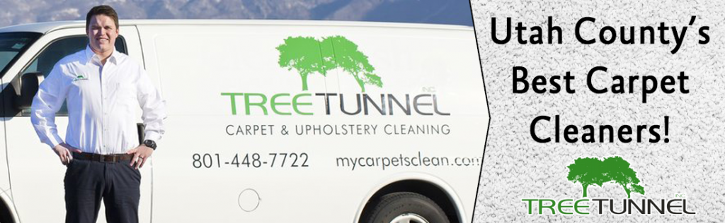 Carpet Cleaning Utah County Tree Tunnel Service Truck