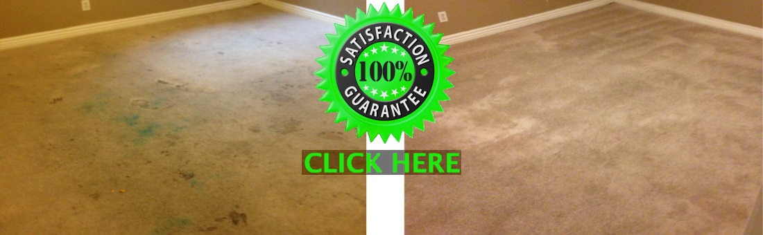 before and after picture of carpet cleaning job complete by tree tunnel inc.